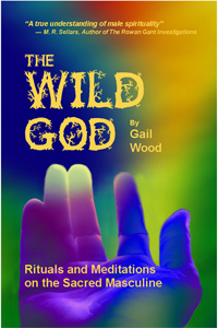 Cover of the Wild God