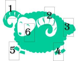 Year of the Green Sheep Tarot spread